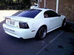 2000 Ford Gt Very Stangly 2000 Ford Mustang Specs Photos Modification Info At