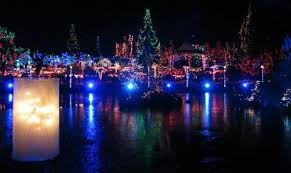 Vandusen Botanical Garden Lights Botanical Gardens Festival Of Lights