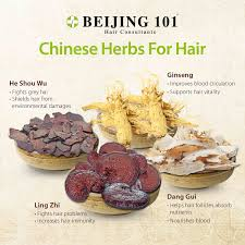 chinese medicine for hair loss singapore new hair style collections