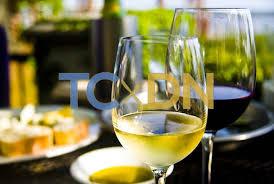 half price restaurant half price wine rinata italian restaurant cities date