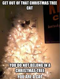 Christmas Tree Meme - you do not belong in a christmas tree meme guy