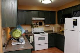 Popular Kitchen Colors With Oak Cabinets by Kitchen Kitchen Color Schemes With Wood Cabinets Dark Floor