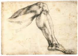 study of a left leg recto michelangelo 1524 1525 drawing