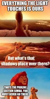 Troline Meme - simba shadowy place meme imgflip