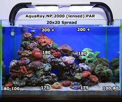 led lights for coral tanks best aquarium lighting on the market meant to just unbox and place