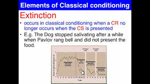 extinction u0026 spontaneous recovery classical conditioning youtube