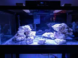 Saltwater Aquascaping My First Saltwater Aquascape In A 40b Aquascaping Forum Nano