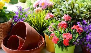 spring landscaping jumpstart your spring landscaping professional property management