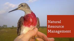 majors of environment and natural resources
