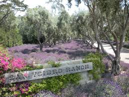 Wedding Venues Southern California Wedding Locations In Southern California San Ysidro Ranch