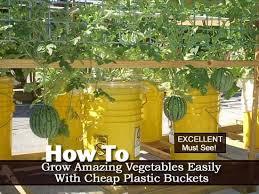 266 best bucket aquaponics images on pinterest gardening