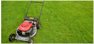 how to buy the best lawn mower lawn care pal