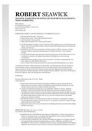 sample resume international business order professional admission essay on civil war cell phone sales