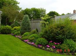 best 25 landscaping along fence ideas on pinterest garden ideas