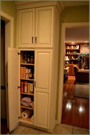 Sears Kitchen Cabinets Accessories Surprising Kitchen Pantry Cabinet Pull Out Shelf