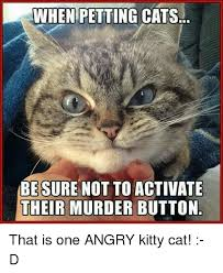 Meme Kitty - when petting cats besure not to activate their murder button that