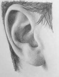 best 25 pencil drawing inspiration ideas on pinterest drawing