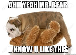 Ahh Yeah Meme - ahh yeah mr bear u know u like this bulldog sex meme generator