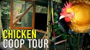 my backyard chicken coop designs u0026 tour youtube