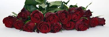 Bouquet Of Roses Free Photo Roses Bouquet Of Roses Bouquet Free Image On