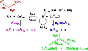 Light Independent Reactions Definition Atrp In Protic Media Matyjaszewski Polymer Group Carnegie