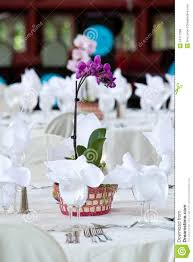 Orchid Centerpieces Blue Orchid Centerpieces Special Offers