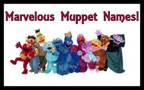 marvelous muppet names tulipbyanyname