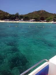 padi scuba diver course in pattaya thailand