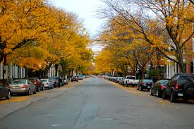 chestnut street named one of the most beautiful streets in