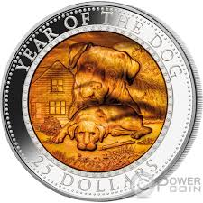 mother of pearl power coin