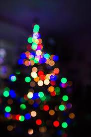 folsom zoo christmas lights 2017 12 kid friendly christmas activities in davis and sacramento poppy