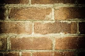 grunge greenish brick wall background texture www myfreetextures