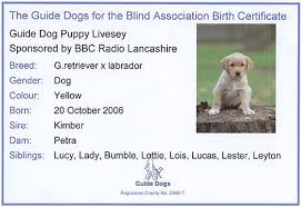 dog birth certificate template