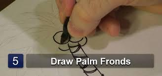how to draw palm tree drawing u0026 illustration wonderhowto