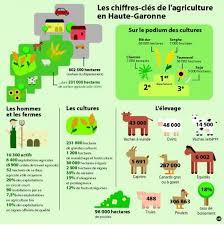 chambre agriculture haute garonne haute garonne un profil agricole 29 07 2013 ladepeche fr