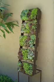 succulent planter best 25 succulent planters ideas on pinterest succulents