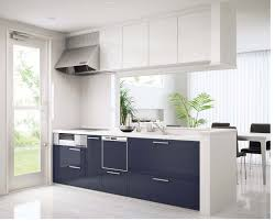 Modern White Kitchen Cabinets by Kitchen Cabinet Adaptability Contemporary Kitchen Cabinets