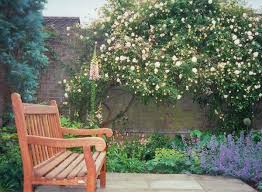 low maintenance cottage garden google search for the garden
