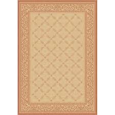 Indoor Outdoor Rugs Overstock by Courtyard Vine Border Outdoor Rug