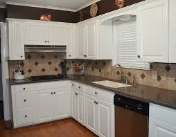Cost Of Kitchen Cabinets Installed Cabinet Cosmetology