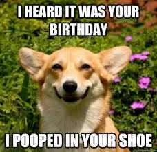 Corgi Birthday Meme - i heard it was your birthday i pooped in your shoe misc quickmeme