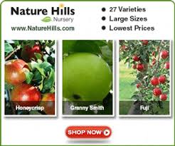 apple trees malus domestica arizona vegetable fruit gardening