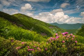 asheville north carolina blue ridge parkway spring flowers scenic