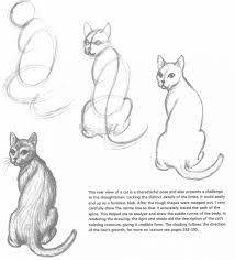 how to draw a cat 4 animal art pinterest cat prophetic art