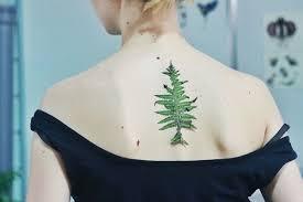 80 meaningful leaf designs