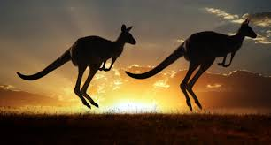 australia tourism bureau tourism on rise in land