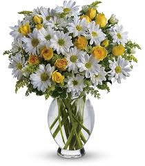 Flowers For Men - birthday flowers for april u2013 daisies