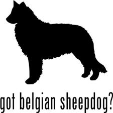 belgian sheepdog herding buy dog belgian sheepdog rescued symbol decal car truck sticker