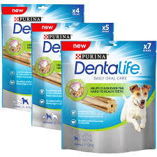 dog dental care cleaning dogs teeth cheaper than your vet