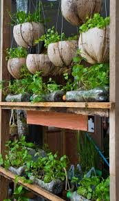 Bottle Garden Ideas 12 Ideas For Plant Containers To Jazz Up Your Garden